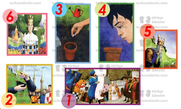 3. Sınıf MEB Yayınları Kralın Tohumu Metni Etkinlik Cevapları - Oluş Sırası