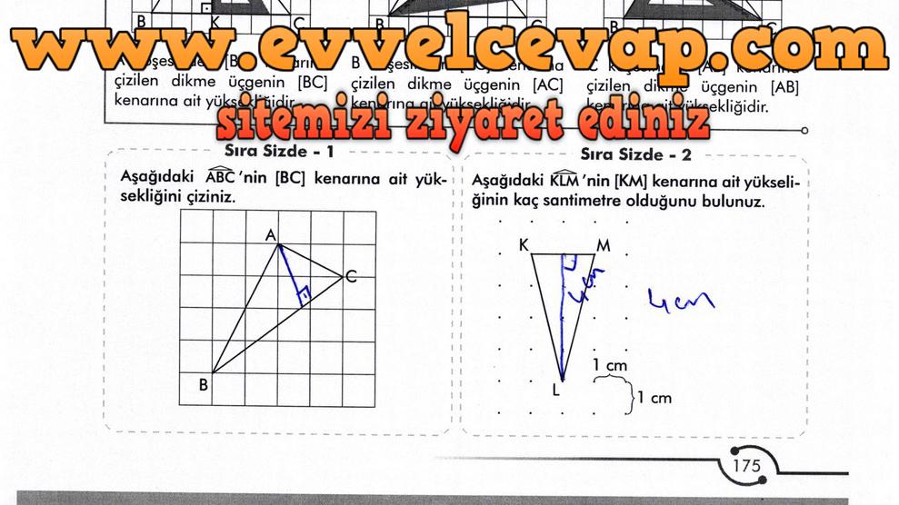 6. Sınıf Meb Yayınları Matematik Ders Kitabı Sayfa 175 Cevabı