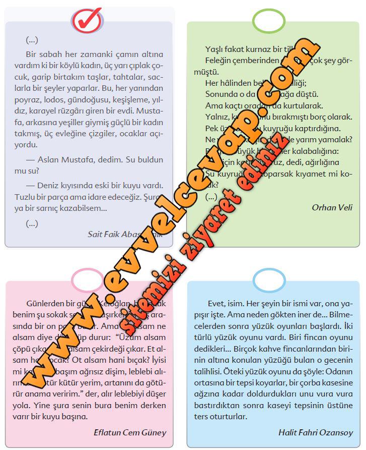 6. Sınıf Türkçe Ders Kitabı Ekoyay Yayınları Sayfa 88 Cevabı